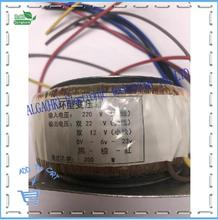 Potenza di picco 120w 150w 200w 300w 500w 1600w trasformatore ad anello trasformatore amplificatore di potenza toroidale doppio 12V 15V 17V 22V 24V 25V 30V