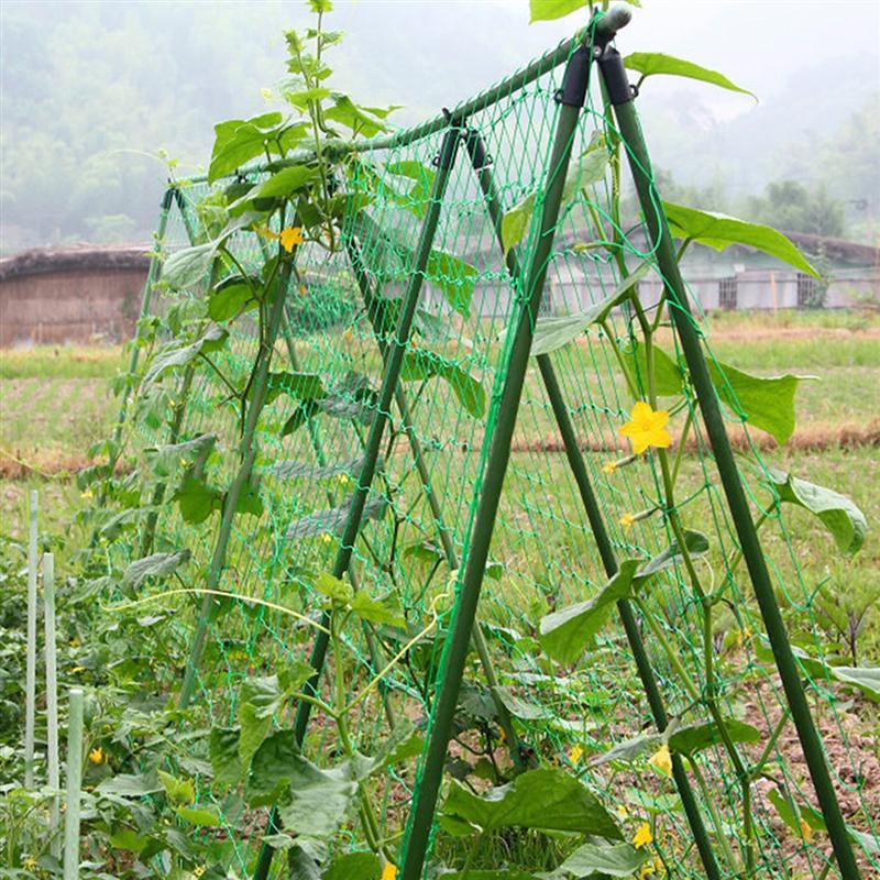Garden Green Nylon Trellis Netting Support Climbing Bean Plant Nets Grow Fen CeIdeal Vining Vegetables/Fruits/Flowers Hot Sale
