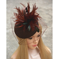 NEW Veil Women Fascinator Pillbox Felt Wool Cocktail Race Hat Wedding Cocktail  Party Formal Dress Hats T167