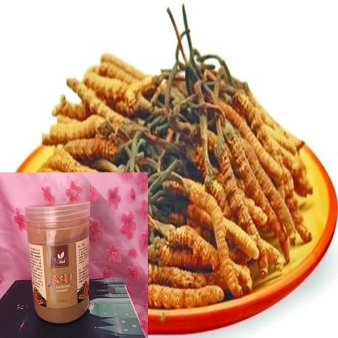 250g 500g organica po de cordyceps sinensis cordyceps sinensis aliviar a fadiga melhorar a funcao