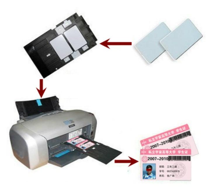 lowest price PVC ID Card Tray Plastic card Printing Tray for Epson R260 R265 R270 R280 R290 R380 R390 RX680 T50 T60 A50 P50 L800 L801 R330