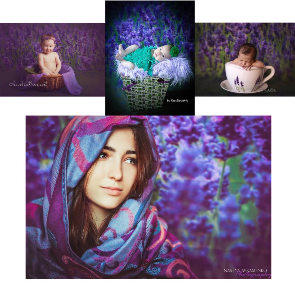 Online kopen wholesale lavendel foto uit china lavendel foto ...