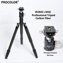 Bexin carbon fiber Portable travel 30KG bear monopod tripod stand professional camera tripod for slr video