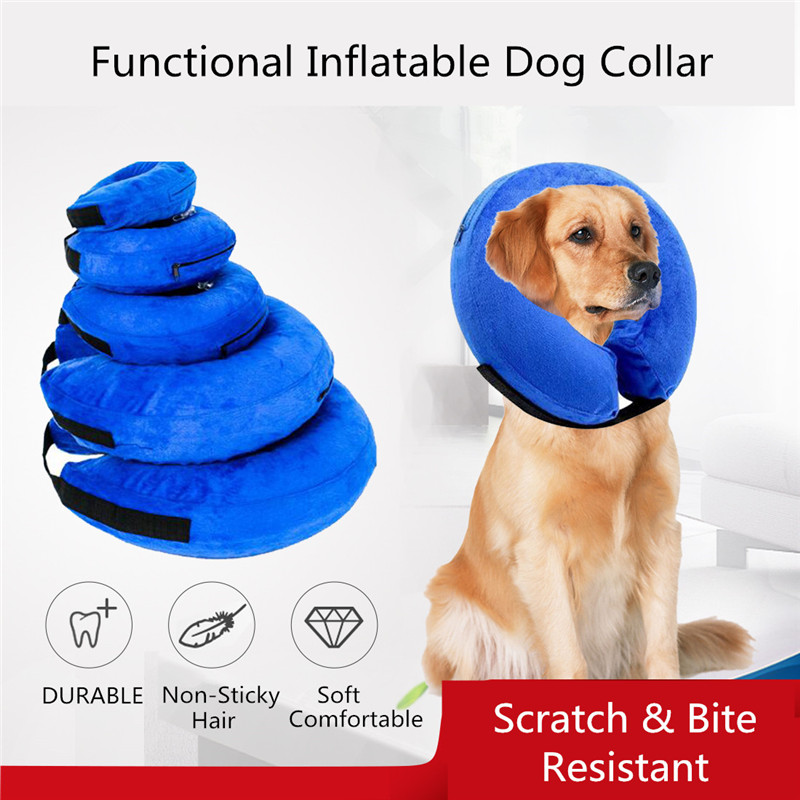 Inflatable Dog Collar (10)