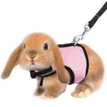 5 Colors Hamster Rabbit Harness And Leash Set Ferret Guinea Pig Rat Small Animal Pet Walk Harnesses Leades S/M/L/XL