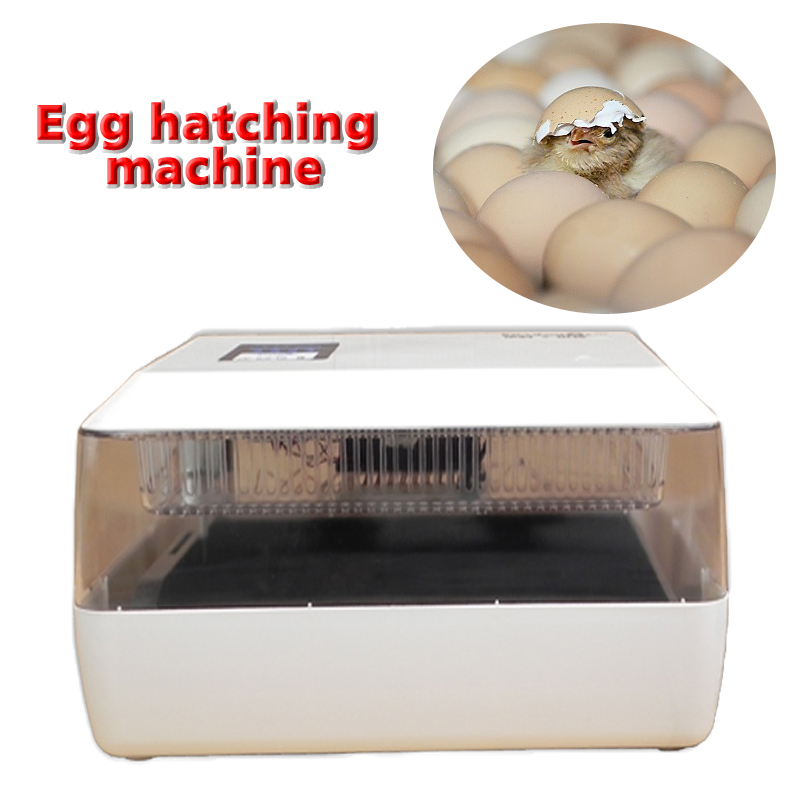 1PC 220V/12V Mini Egg Incubator for 60 Chicken Eggs, 40 Duck Eggs, 90 Quail Eggs Egg Hatching Machine