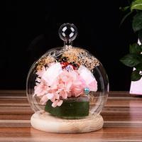 AsyPets Verre Globe Affichage Dôme Couverture avec Base En Bois Coeur Forme Poignée Accueil Decoration-25