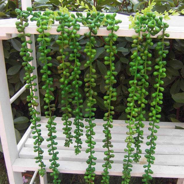 62cm Artificial Succulents Pearls Fleshy Green Vine Flower Hanging Rattan Wall Lover Tears Succulent