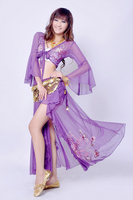 Belly Dance Training Clothing Set Belly Dance Clothes Indian Dance Costume Skirt Costumes 3pcs Top Skirt