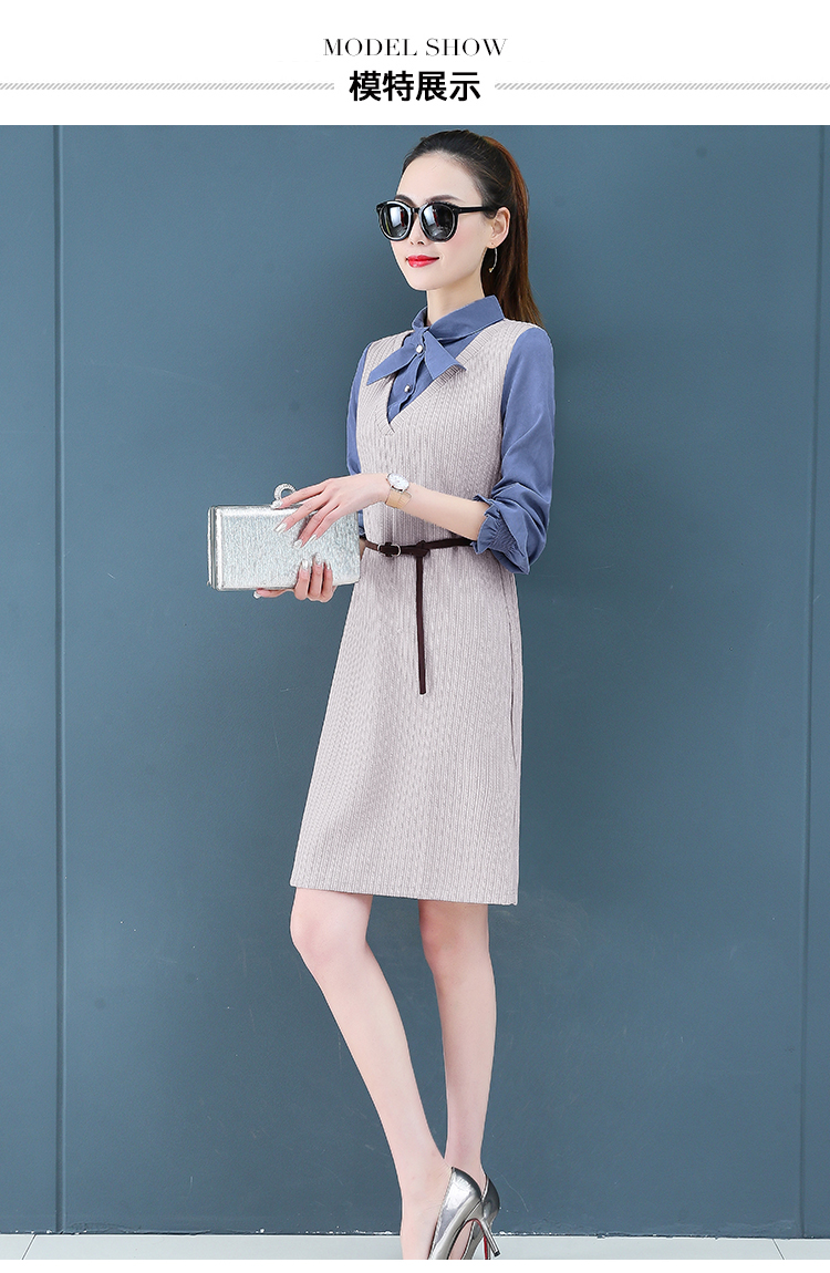 Render a dress in female new spring in the spring and autumn qiu dong fake two piece suit dress long 13