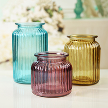 Fashion glass vase multicolour dried flowers derlook brief accessories decoration transparent hydroponic