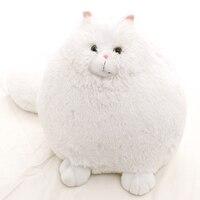 Fat Pet Cats Persian Cat Toys Pembroke Pillow Plush Toys Soft Stuffed Animal Plush Dolls Simulation