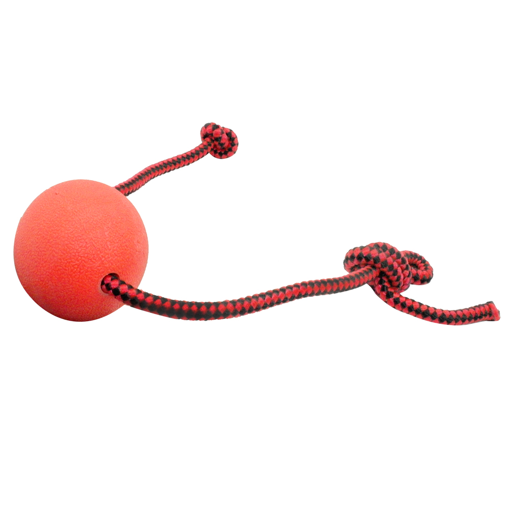 Rubber Ball Dog Toy : Interactive rubber ball dog toy
