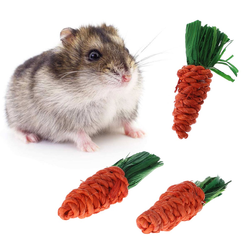 3Pcs Carrot Shaped Rabbit Hamster Chew Bite Toys Guinea Pig Tooth Cleaning Toys