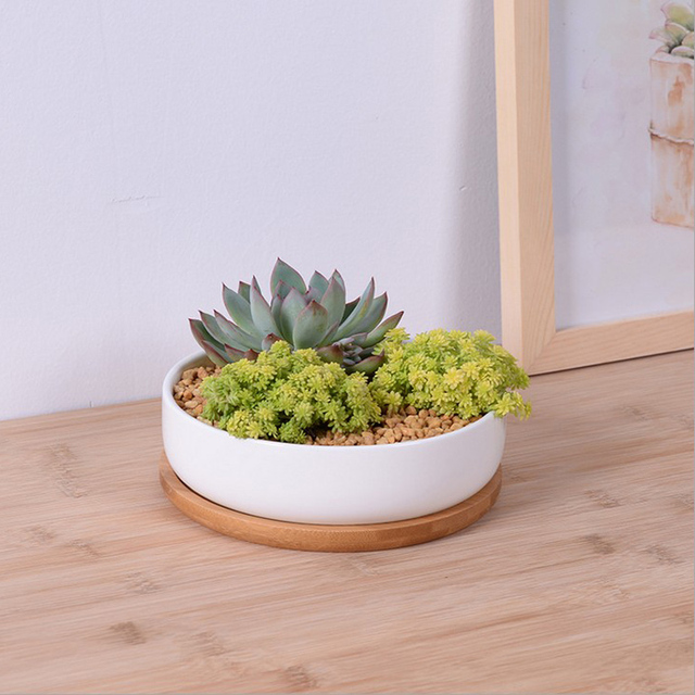 Modern Simple White Ceramic Shallow Flower Pot With Bamboo Tray Zakka  Succulent Ceramic Pots Desktop Small