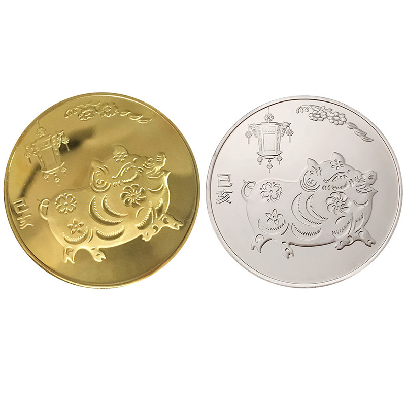 Year of the Pig Souvenir Coin Chinese Zodiac Collection Coin Lucky CharacterS!