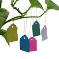 100 шт./компл. многоразовые садовые надписи  водонепроницаемая полоса  пластиковые подвесные бирки для растений  товары для сада  5 видов цвет...