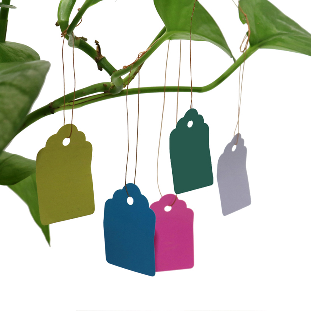 100 Pcs/set  Reusable Gardening Labels Signs Waterproof Strip Line Plastic Plant Hanging Tags Garden Products Supplies 5 Colors