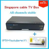 I canali starhub HD via cavo box V9 Pro da V8 dorato aggiornamento versione supporto WIFI + Youtube dvb-s2 ricevitore tv per Singapore