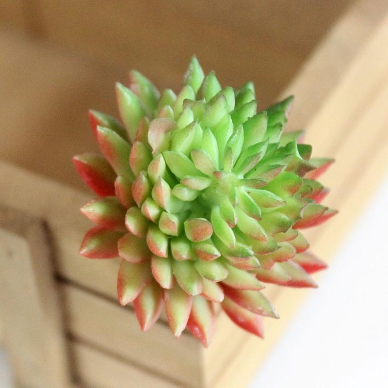 AsyPets Artificial Lifelike Succulents Multi Type PVC Plant Garden Miniature Aloe Cactus DIY Home Floral Decor