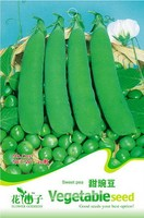 Vegetable seeds Sweet pea seed eating peas The spring and autumn period and the special family hold 20 seed/package