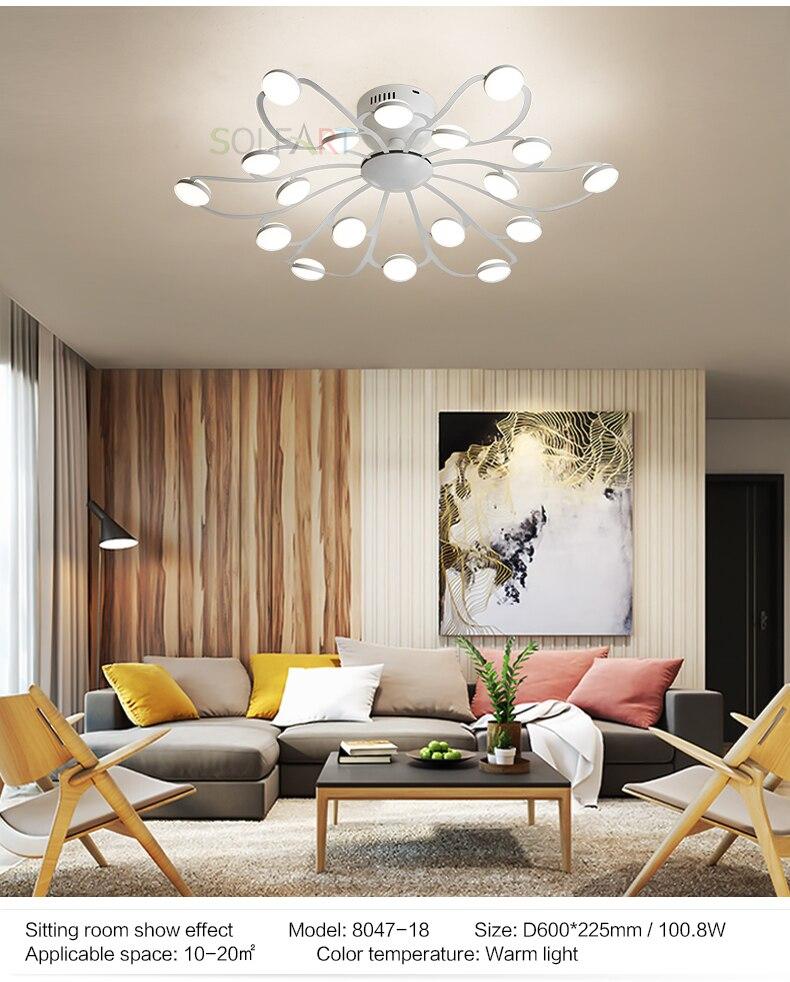 8047-LED Ceiling Light Sconce Luminaria Chandelier Ceiling Avize Light Fixtures Ceiling Lamp_05