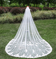 3 Meter Cathedral Wedding Veils Long Vintage Lace Edge Bridal Veil with Comb Wedding Accessories Bride Mantilla Wedding Veil