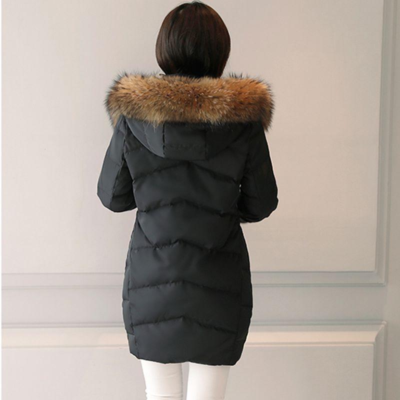 Veste col capuche femme