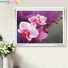 купить Diy Full Round Resin Diamond Painting Embroidery Rhinestones Kit Beautiful Moth Orchid Flower Mosaic Decor As A Good Hobby Gift дешево