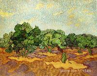Moderne art Olive Grove Pâle Bleu Ciel par Vincent Van Gogh peintures pour salon peint À la Main de Haute qualité