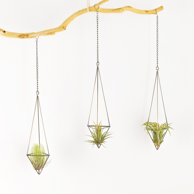 Mkono Air Plant Holder Hanging Planter Pot Geometric Himmeli For Tillandsia Airplants Indoor Decoration With Chains Bronze
