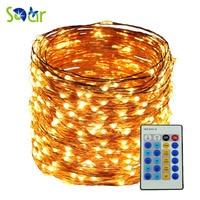 5M 10M 20M 30M 50M Remote Warm White Led Copper String 5V 12V LED Wire Light
