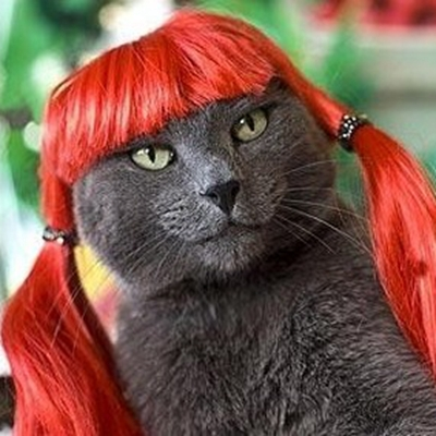 [MPK Pet Store] Red Pet Wig, Funny And Cute Cat Wig, Dog Wig, Artificial Orange Hair, Red Hair For Pets