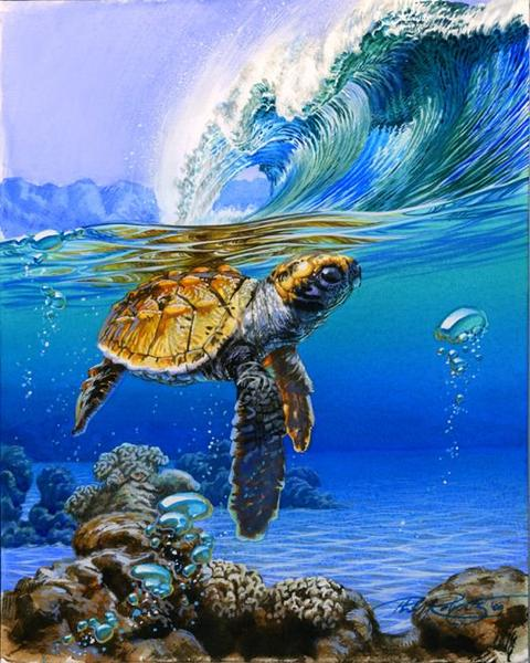 DIY Digital Painting By Numbers Package Sea turtle oil painting mural Kits Coloring Wall Art Picture Gift frameless