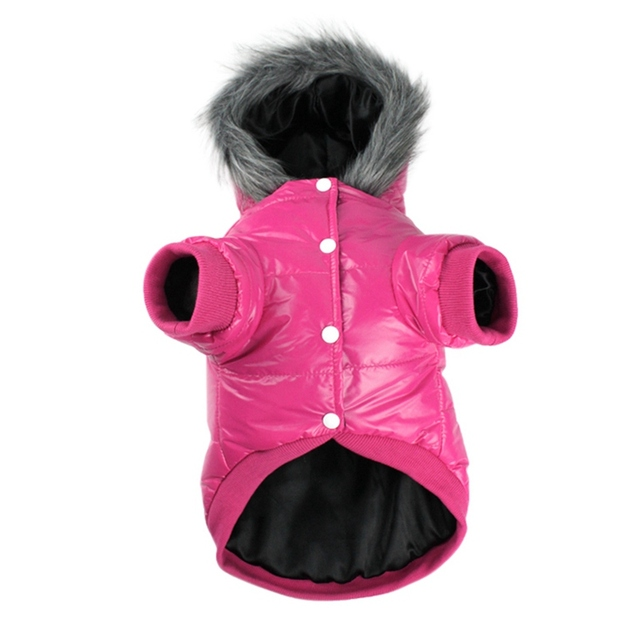 Pet Dogs Winter Warm Two Legs Costume Solid Colors Thickened Down Hoodies 4