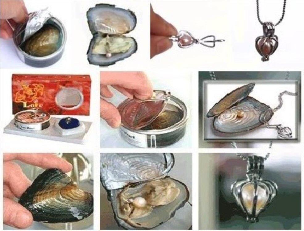 Vente en gros femmes/fille 10 ensemble amour souhait collier de perles ensemble pendentif goutte d'huître