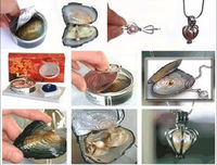Wholesale Women's/Girl's 10 Set Love Wish Pearl Necklace Set Oyster Drop Pendant