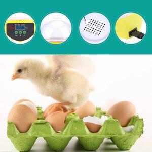 Image 5 - Digital 7 Eggs Incubator For Egg Broedmachine Chicken Duck Quail Birds Egg Hatcher Electronic Incubator Tools
