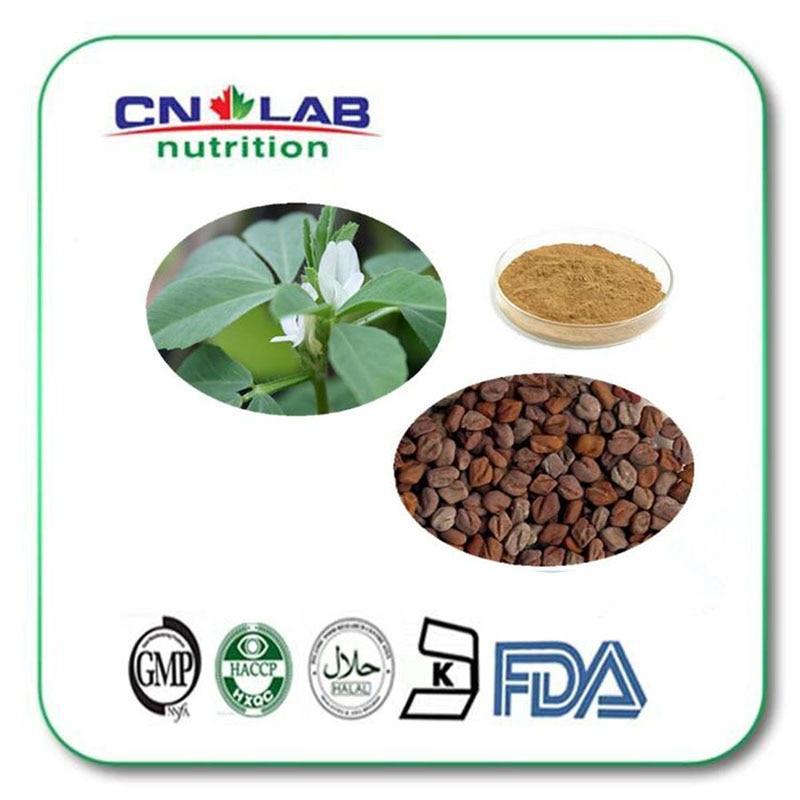 ISO Manufacture Supply new trigonella foenum-graecum/Fenugreek Seed Extract10:1 1000g/lot hot 100% pure fenugreek seed extract methi extract