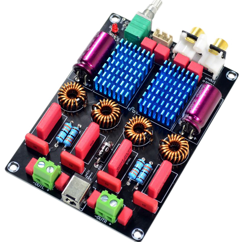Tpa3116 2.0 Dual Chip Wima High-End Digital Power Amplifier Board (100W+100W)(China)