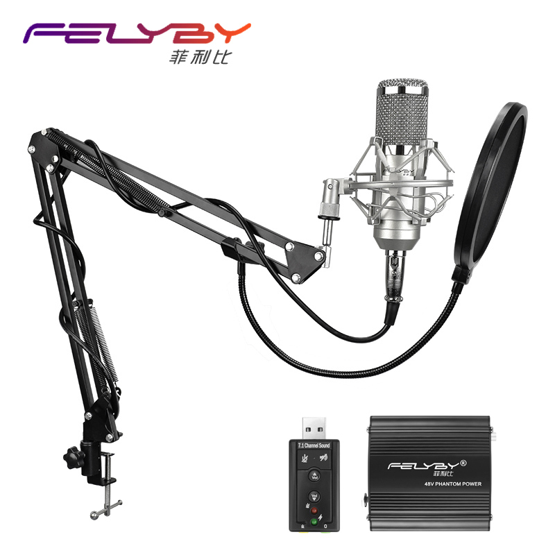 FELYBY Professional Condenser Microphone for computer bm 800 Audio Studio Vocal Recording Mic KTV Karaoke + Microphone stand professional switch dynamic wired microphone stand metal desktop holder for beta 58 bt 58a ktv karaoke mic microfone audio mixer
