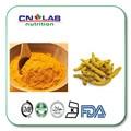 100% Органический Натуральный Экстракт Корня Куркумы 1 kg/bag Чистый Экстракт Куркумы Куркумин 95% Порошок