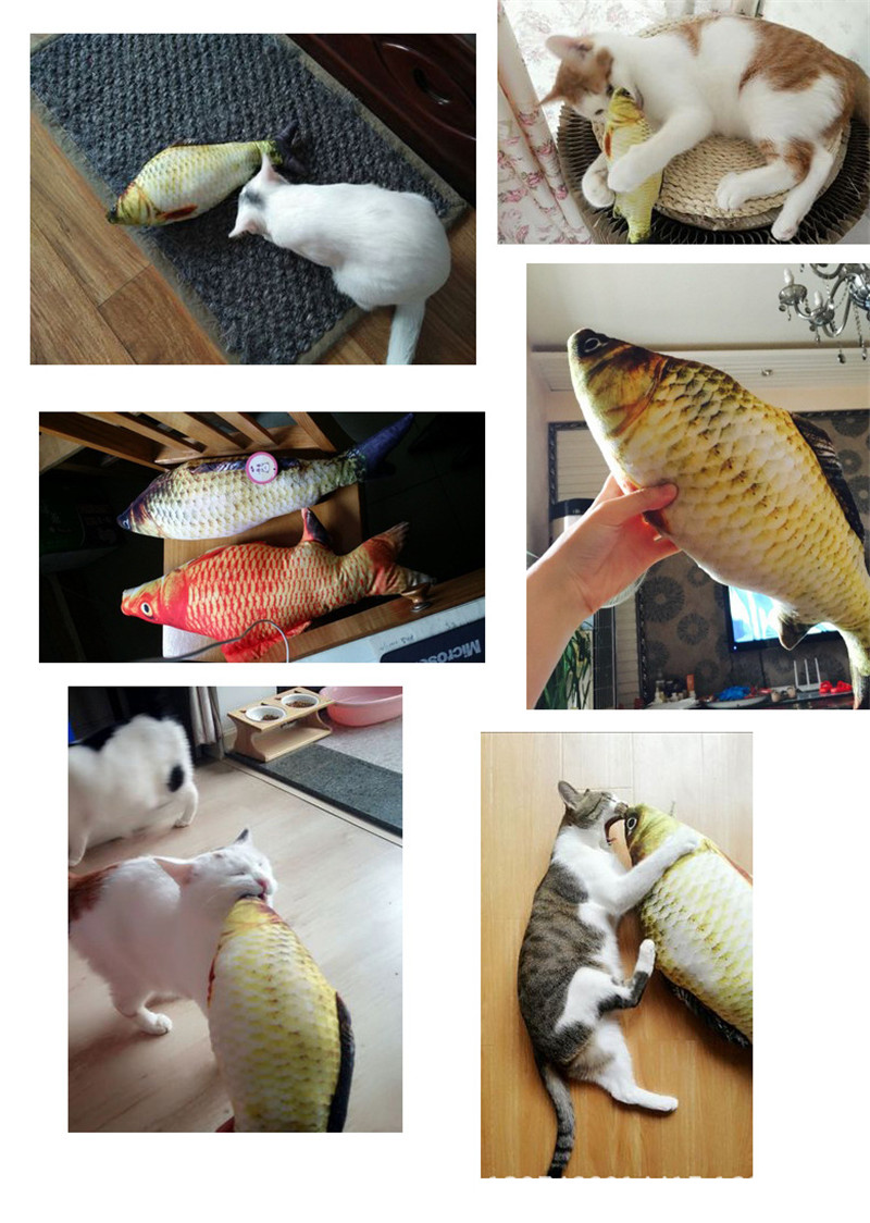 Realistic Fish Cat Toy
