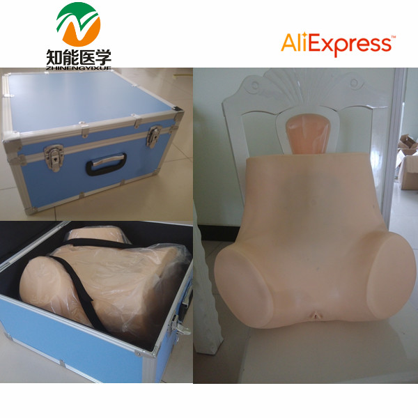 BIX-FL Medical Teaching Model Gynecological Examination Training Simulator WBW119 bix lv19 medical model preoperative