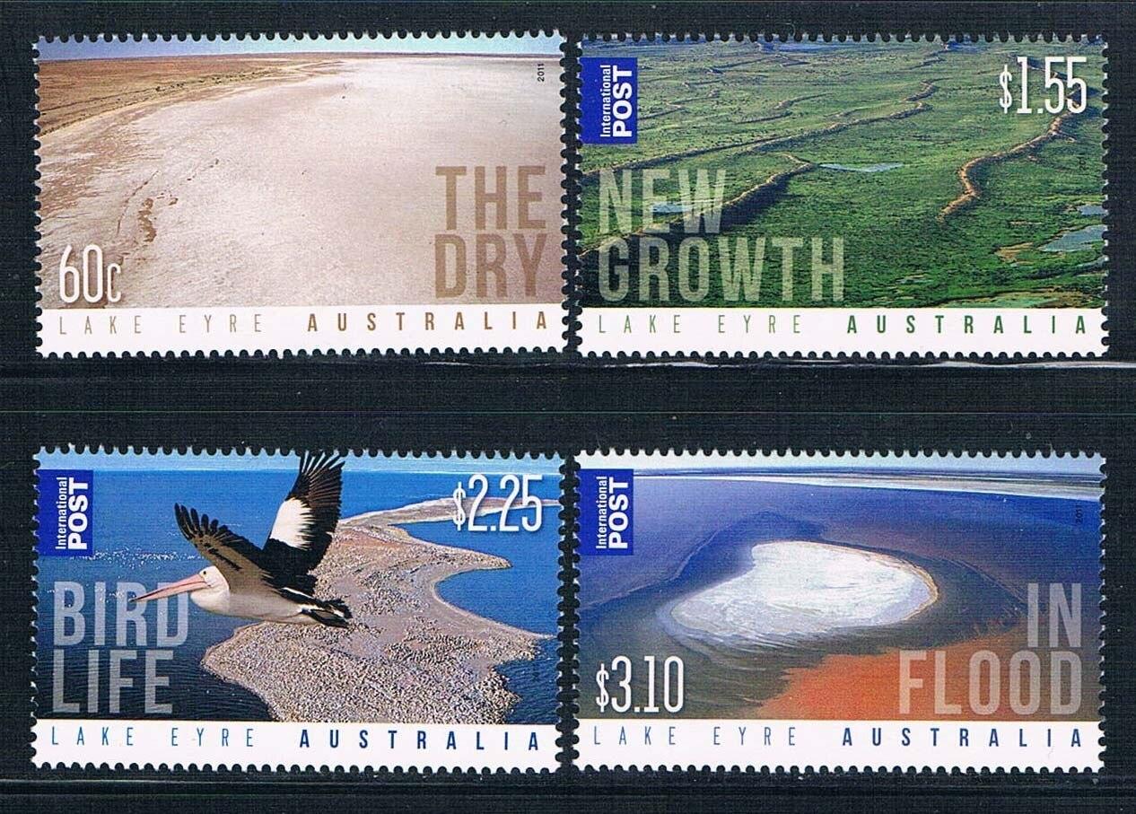 AA0323 Australia 2011 4 0716 new scenery of Lake Eyre bird