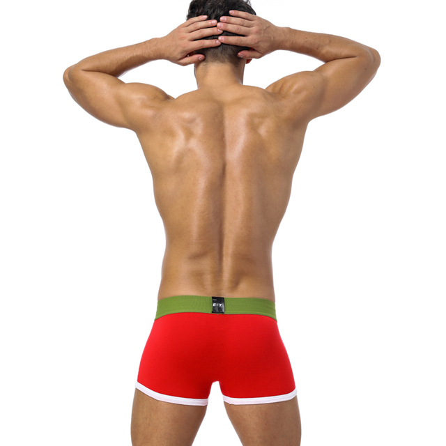 BS Brand Boxer Men Underwear Sexy cotton Boxers Gay Underwear Cueca male underpants slip Cuecas Male Panties Boxershorts BS40