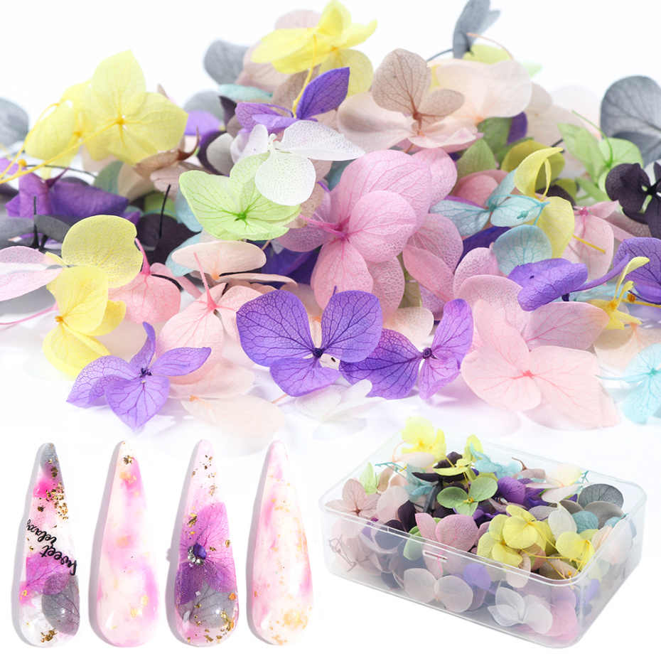 100pc Dried Flowers Nail Art Decoration DIY Natural Pressed Flora Gel Manicure Stickers Hydrangea Leaf 3D Decor Nail Tips LA1505