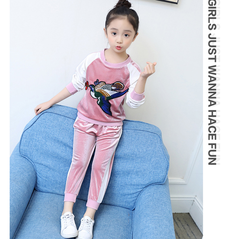 Kids Clothing Set Outfits Sport Suit Embroidery Baby Girl Hoodies Gold velvet + Sport Pants Two Piece Set Top and Pants 2PCS
