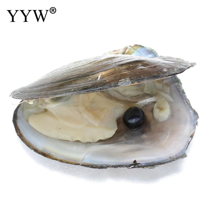 Wholesale natural Mussel Shell Cultured Love Wish Freshwater Pearl oyster 9-10mm in Vacuum-packed