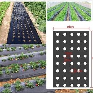 Image 1 - 5 отверстий 95 см * 50 м 0,02 мм, черная садовая мембрана для овощей, сельскохозяйственные растения, мульчирование, сеялка, пластиковая перфорированная полиэтиленовая пленка